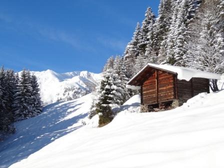 Recyclage INITIATEUR  Raquette à neige FFCAM